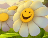 thumb_smiling flower