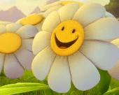 thumb_smiling flower